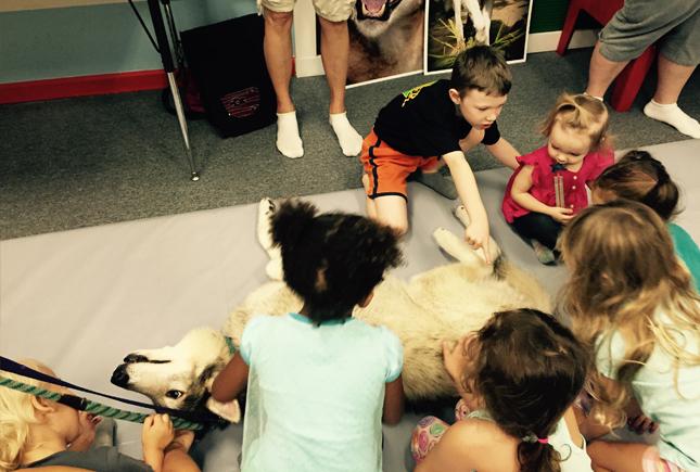 wolf sanctuary   Whiz Kids Play Zone & Party Place - Naples, Florida